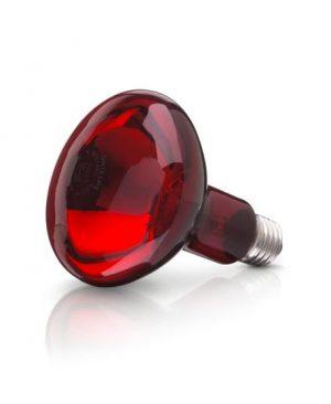 Bóng đèn hồng ngoại y tế 250w X-OSRAM